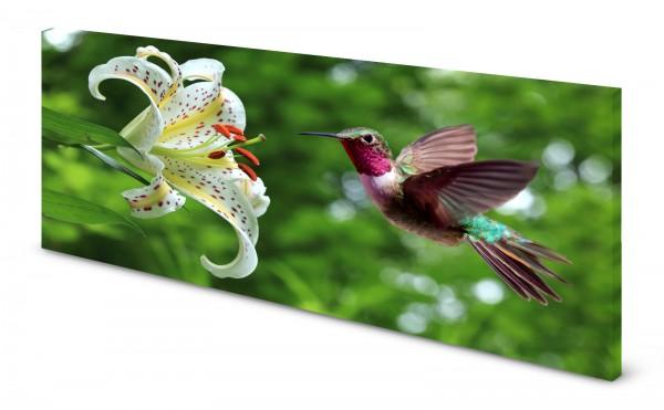 Magnettafel Pinnwand Bild Natur Lilie Blumen Kolibri gekantet