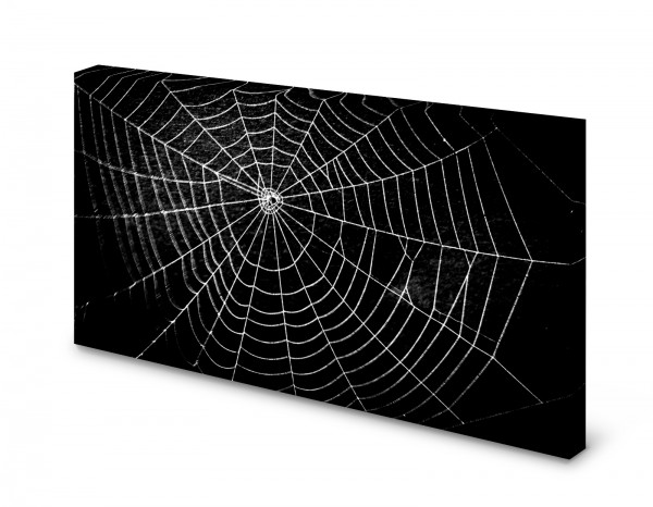 Magnettafel Pinnwand Bild Spinnennetzt Netz XXL gekantet