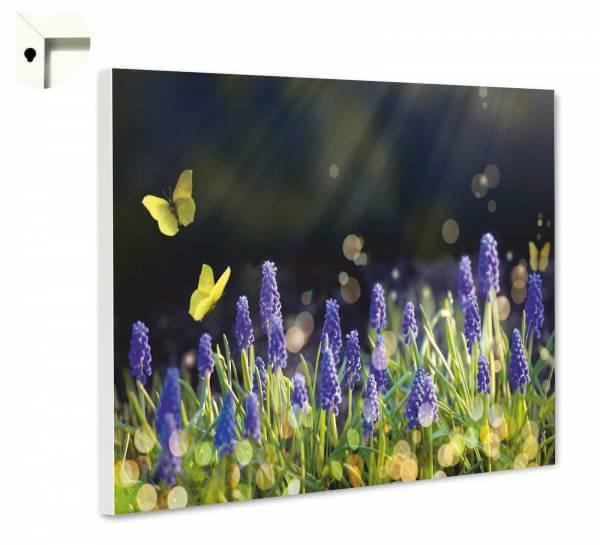 Magnettafel Pinnwand Natur Blumen Hyazinthen im Frühling
