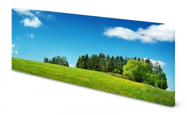 Magnettafel Pinnwand Bild Sommer Wiese Wald Himmel gekantet