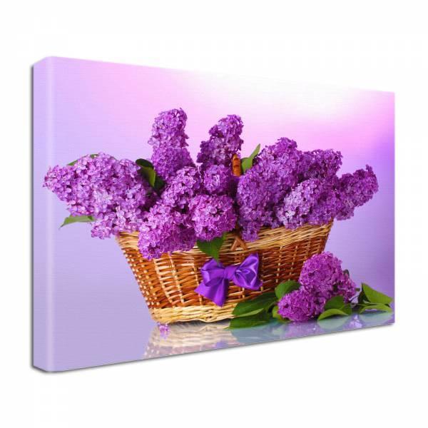 Leinwand Bild edel Blumen lila Frühlingsflieder im Korb