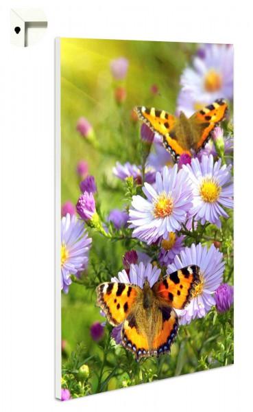 Magnettafel Pinnwand Blumen & Schmetterlinge