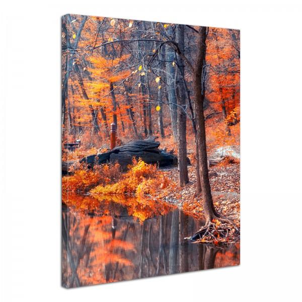 Leinwand Bild edel Natur Herbst Wald