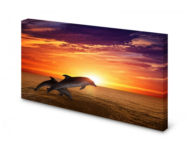 Magnettafel Pinnwand Bild Delphine Meer Sonne gekantet