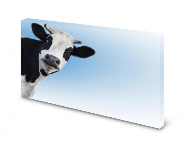 Magnettafel Pinnwand Bild Kuh Holsteiner Rind XXL gekantet