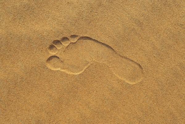 Magnettafel Pinnwand XXL Bild Spuren im Sand