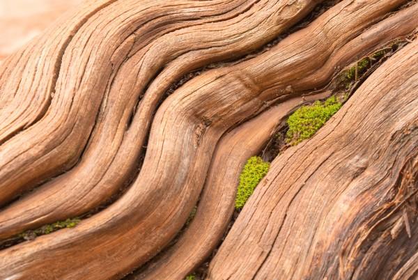Magnettafel Pinnwand XXL Holz Naturholz Holzoptik hell