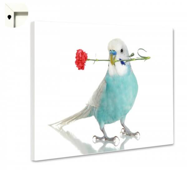 Magnettafel Pinnwand Memoboard Motiv Tiere Wellensittich mit Blume