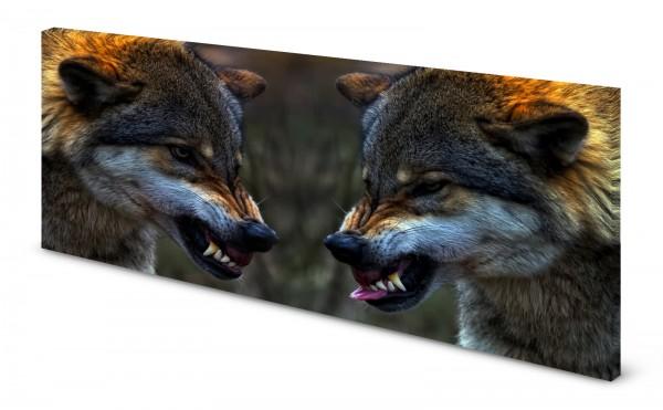 Magnettafel Pinnwand Bild Panorama Wölfe Wolf Wolfsrudel gekantet