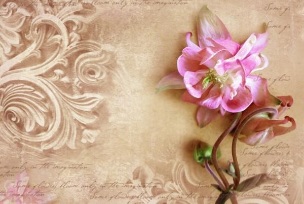 Magnettafel Pinnwand XXL Bild Blume Blumenmuster floral