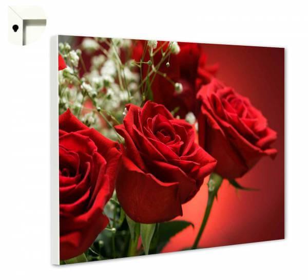 Magnettafel Pinnwand Rosen in rot