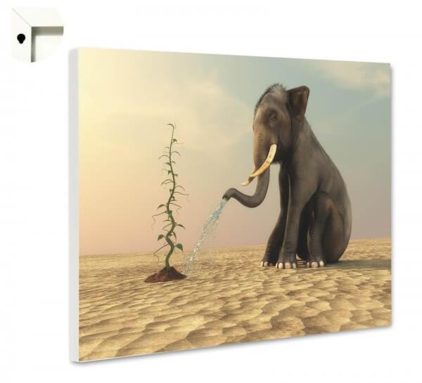 Magnettafel Pinnwand Tiere Elefant Hoffnung