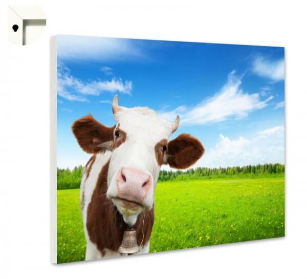 Magnettafel Pinnwand Memoboard Motiv Kuh in braun und weiß