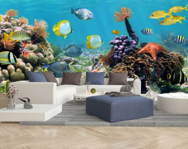 Vlies Tapete Fototapete Panorama Korallen Riff Südsee Fische