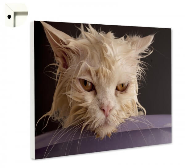 Magnettafel Pinnwand Memoboard Tiere nasse Katze tiefenentspannt