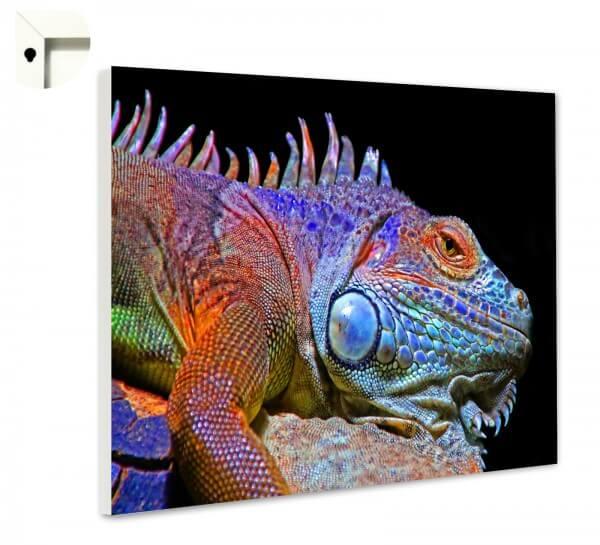Magnettafel Pinnwand Memoboard Motiv Tiere Chameleon bunt