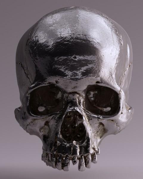 Vlies Tapete Poster Fototapete Totenkopf Knochen Skelett