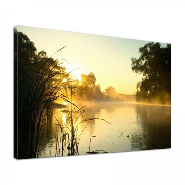 Leinwand Bild edel Natur Morgennebel im Sonnenschein am See