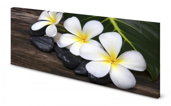 Magnettafel Pinnwand Bild Blumen exotisch Holzoptik Zen gekantet