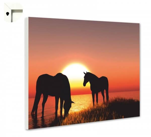 Magnettafel Pinnwand Tiere Pferde im Sonnenuntergang