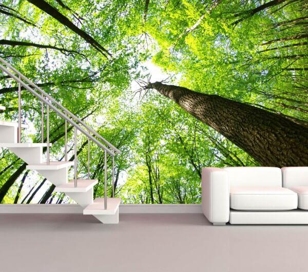 Vlies XXL-Poster Tapete Fototapete Natur Wald Bäume Blick nach oben
