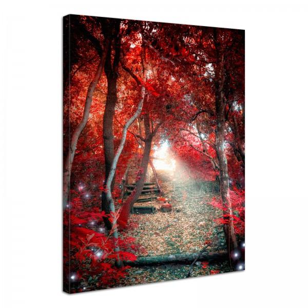 Leinwand Bild edel Natur Zauber Wald Fantasy