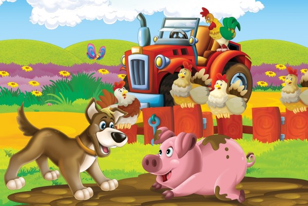 Magnettafel Pinnwand Magnetbild Kinderzimmer Traktor
