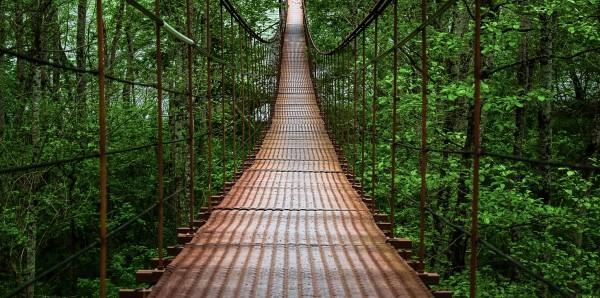 Magnettafel Pinnwand Bild XXL Panorama Hängebrücke Urwald