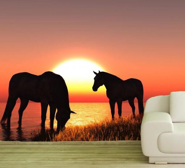 Vlies Tapete Poster Fototapete Pferde Sonnenuntergang Meer