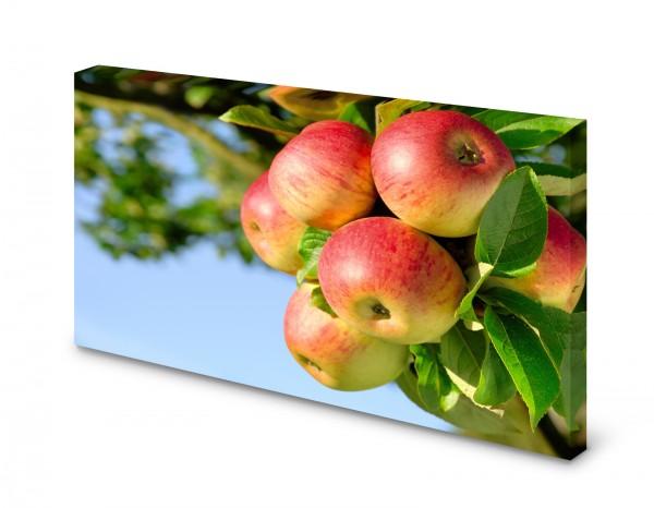 Magnettafel Pinnwand Bild Natur Apfel Äpfel Apfelbaum gekantet