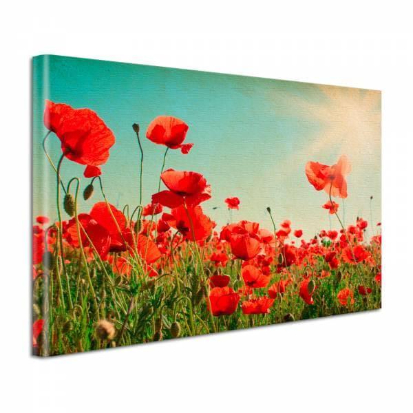 Leinwand Bild Natur & Blumen Mohnblumen Vintage