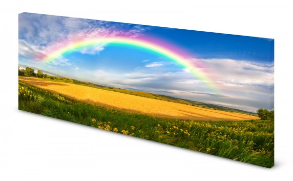 Magnettafel Pinnwand Bild Natur Rapsfeld Regenbogen gekantet