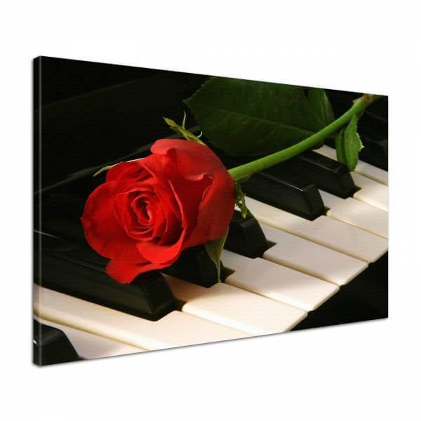 Leinwandbild Bild Wandbild Blumen Rosen Musik Klavier