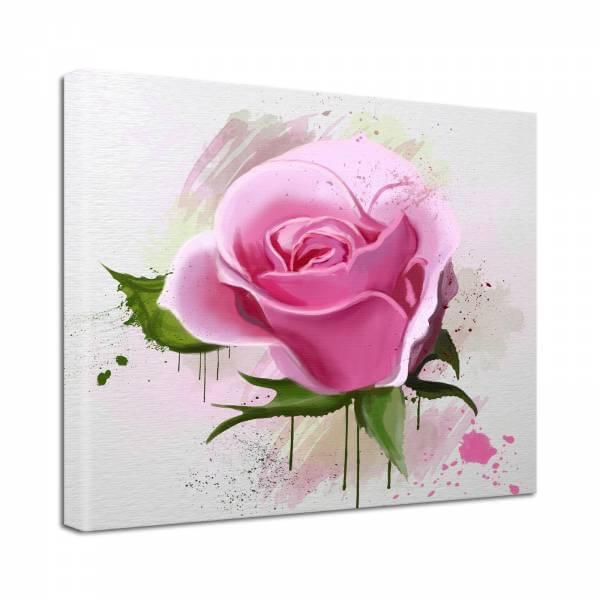 Leinwand Bild Natur & Blumen Rosen Blüte