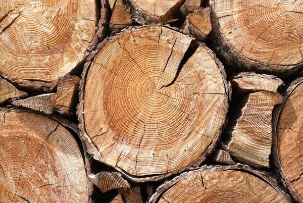 Magnettafel Pinnwand XXL Bild Holzoptik Holzscheiben Holz