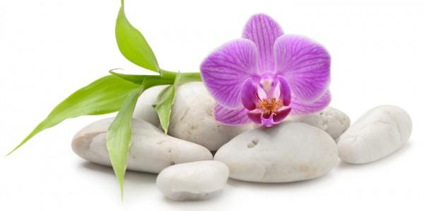 Magnettafel Pinnwand Bild XXL Panorama Zen Orchideen Blüte