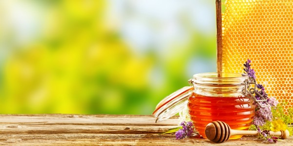 Magnettafel Pinnwand Bild Panorama Küche Honig Imker Biene