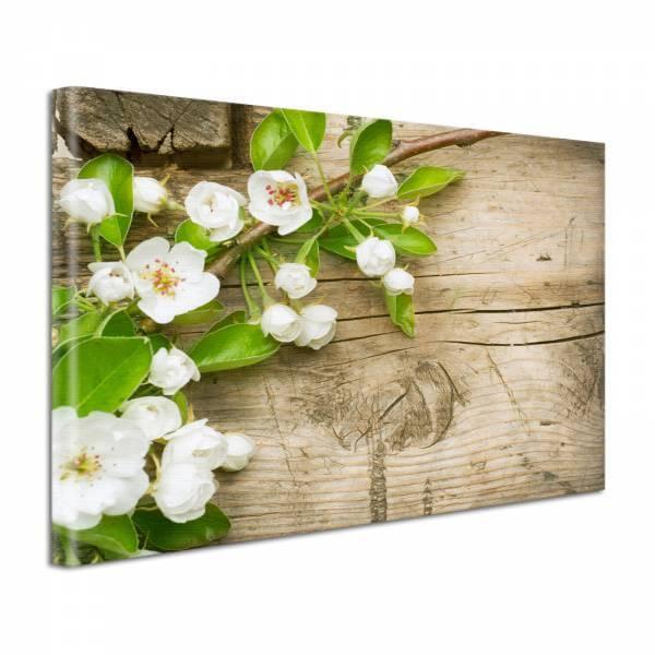 Leinwand Bild Natur & Blumen Apfelblüten auf Holz