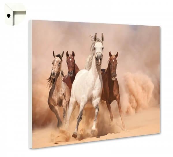 Magnettafel Pinnwand Tiere Pferde Herde Galopp