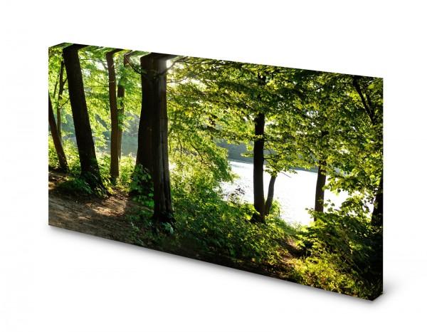 Magnettafel Pinnwand Bild Natur Bäume See Ufer Wald gekantet