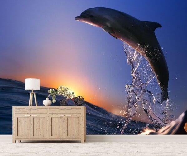 Vlies Tapete XXL Poster Fototapete Delfin Meer Sonne