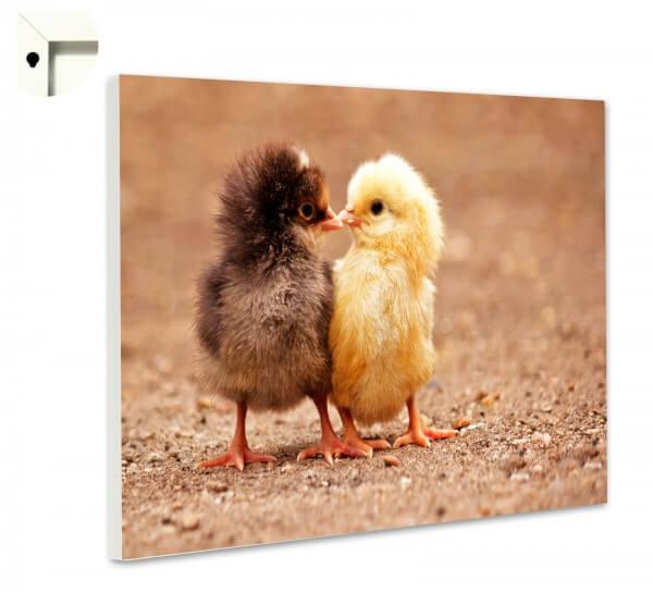 Magnettafel Pinnwand Memoboard Motiv Tiere niedliche Küken