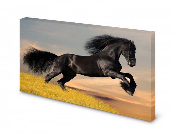 Magnettafel Pinnwand Bild Pferd Friese Rappe XXL gekantet