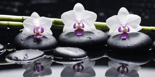 Magnettafel Pinnwand XXL Bild Orchidee Steine Zen schwarz