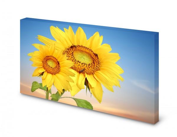 Magnettafel Pinnwand Bild Sonnenblumen Natur Blumen XXL gekantet