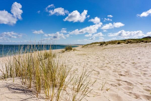 Magnettafel Pinnwand XXL Magnetbild Sand Strand Düne Meer