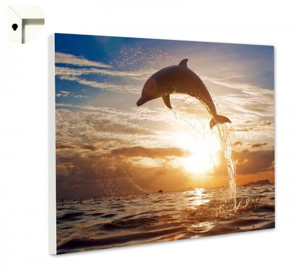 Magnettafel Pinnwand Memoboard Motiv Tiere Delfin im Meer