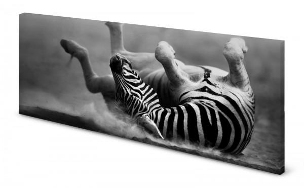 Magnettafel Pinnwand Bild Zebra Panorama gekantet