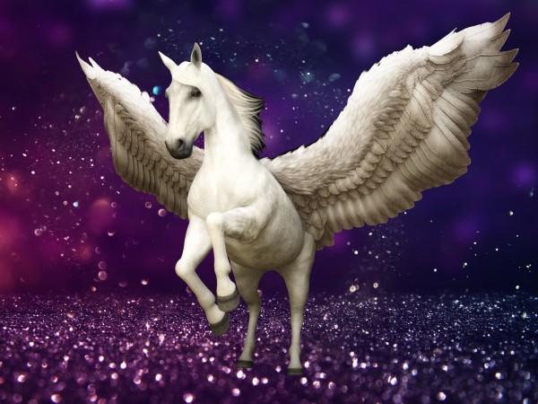 Vliestapete Poster Fototapete Pegasus Pferd lila Glitzer