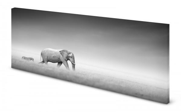 Magnettafel Pinnwand Bild Elefant Zebra Teamplayer gekantet